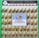 Мушка сухая Пестрокрылка №12 (Hayabusa) (50 шт.)